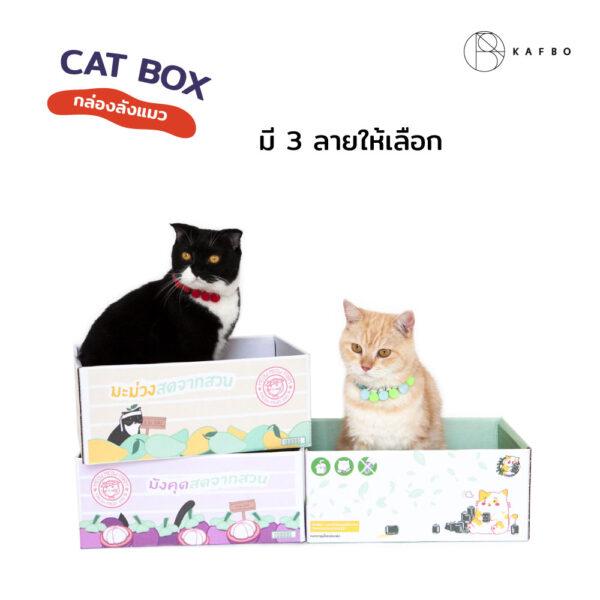Cat box Mango