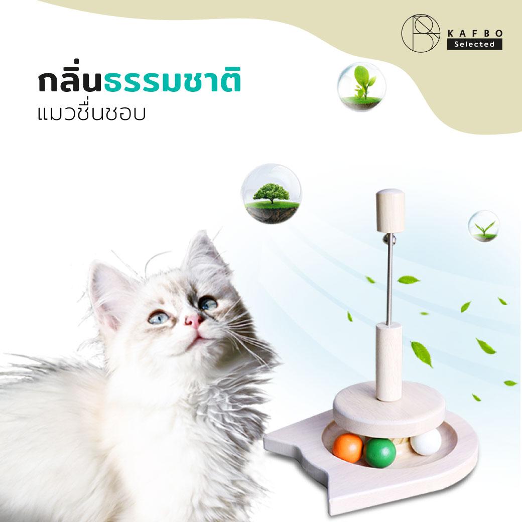 Cat Spring Toy