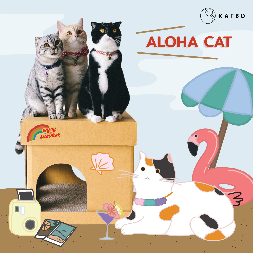 CUBE ALOHA CAT Sticker