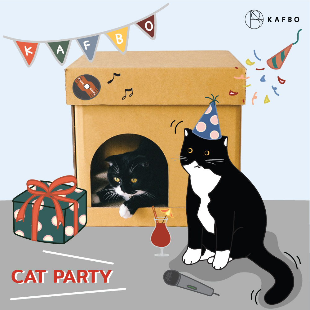 CUBE CAT PARTY Sticker
