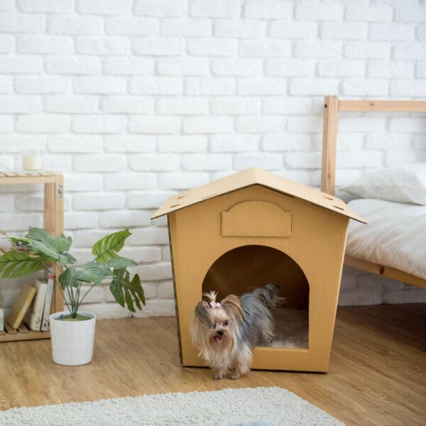 Eco Pet House (no Bed Pad)