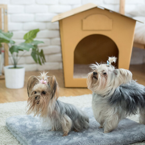 Grey Bed Pad for Eco Pet House, Dog Loft