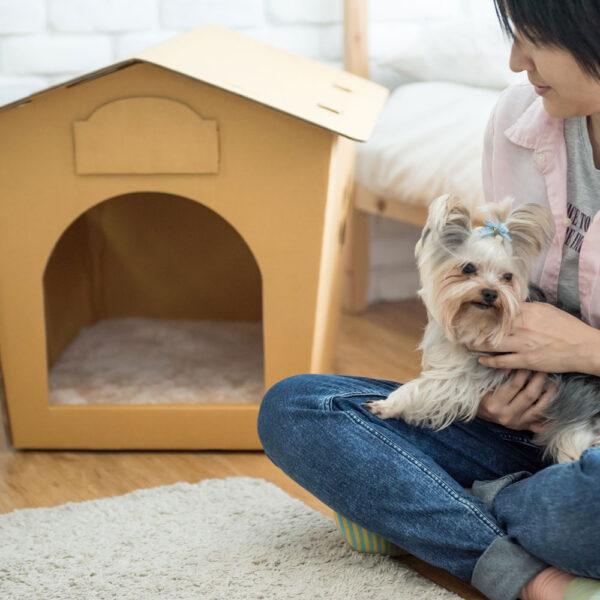 Beige Bed Pad for Eco Pet House, Dog Loft