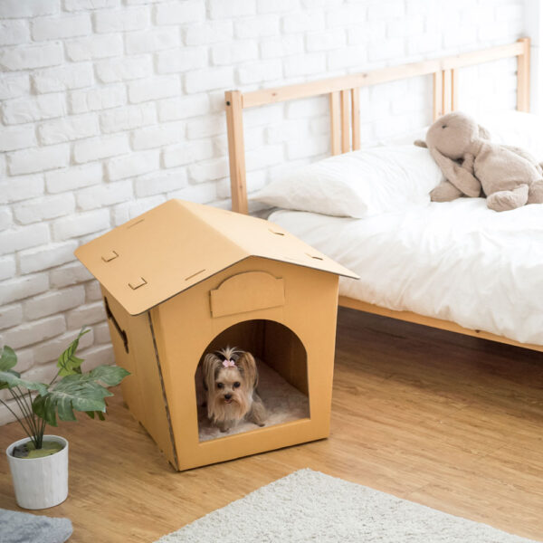 Eco Pet House with Beige Bed Pad