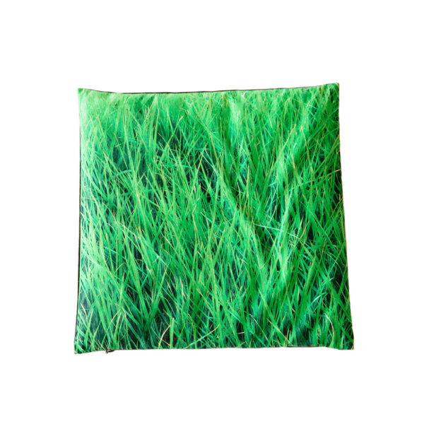 Pillow Rainy Grass